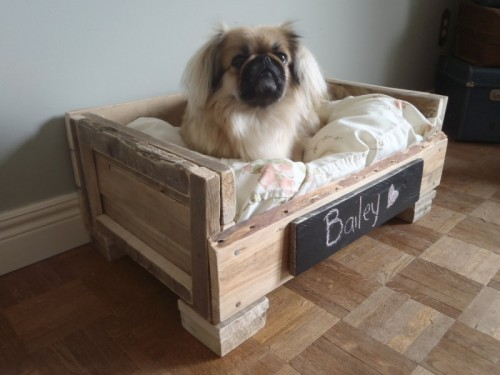 Pallet idea for pet lovers dog beds diy pallet ideas - Faire un panier pour chien ...